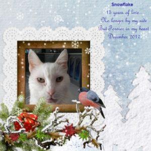snowflake memorial3_