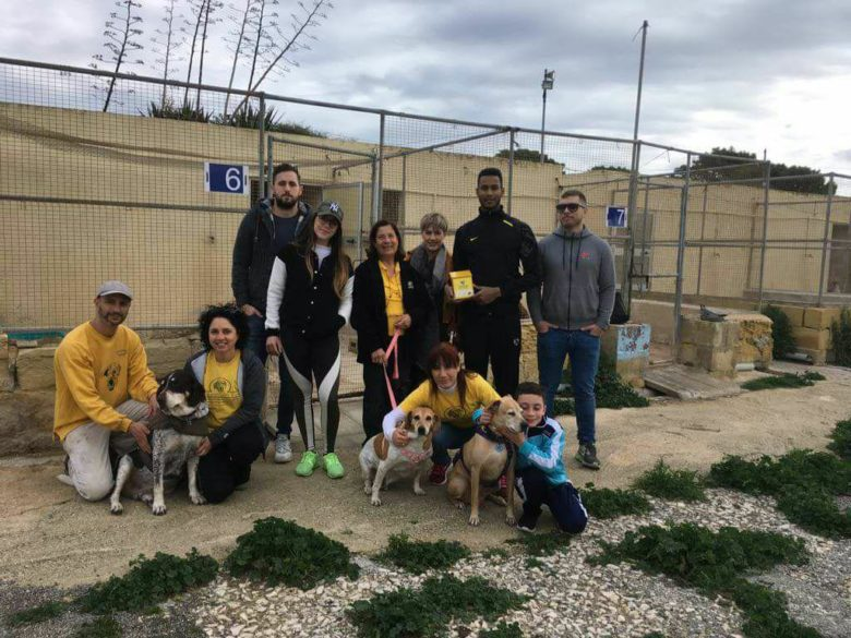 Donation and Dog walk by White Noise Gaming Ltd. employees